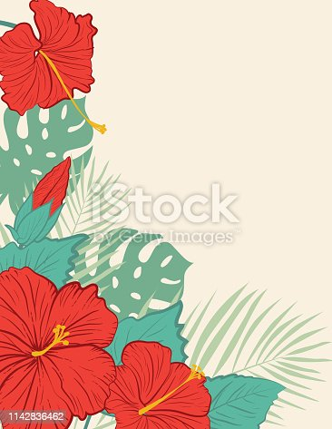 Aloha Hawaiian Luau Party Invitation With Hibiscus Flowers.  Botanical style hibiscus flower background with tropical leaves