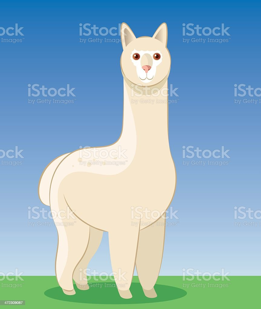 Alpaca royalty-free stock vector art
