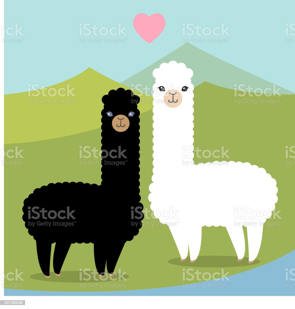 Alpacas in amore - illustrazione arte vettoriale