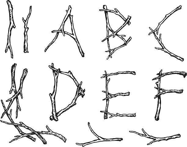 alpha twigs - twig stock illustrations, clip art, cartoons, & icons