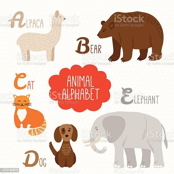 Alphabet for kids with animals alpaca bear cat dog elephant vector id470162970?b=1&k=6&m=470162970&s=612x612&h=b8ohvmah7o57wodknqequegn4scnecswblrbas4hpem=