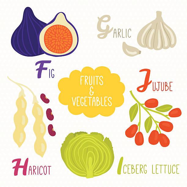 alphabet für kinder mit obst und gemüse - feigensalat stock-grafiken, -clipart, -cartoons und -symbole