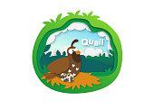 Alphabet Letter Q-quail,paper cut concept