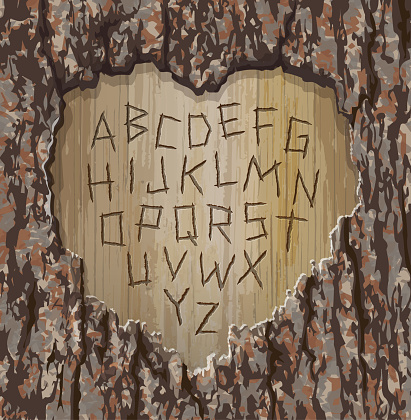 Alphabet letters carved into an old tree with heart shape cut out.