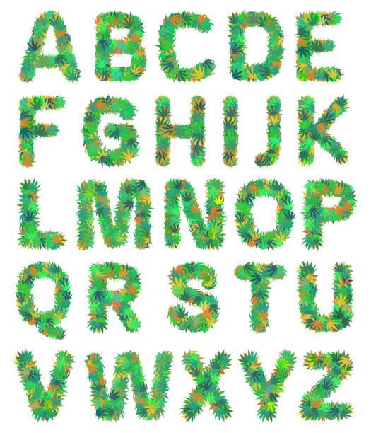 75 rasta font illustrations & clip art - istock  istock