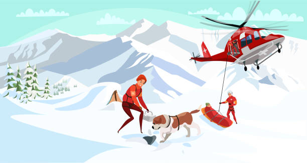 Alpine rescue service flat vector illustration Alpine rescue service flat vector illustration. Brave mountain rescuers with dog cartoon characters. Avalanche victim aircraft transportation, life danger. St bernard dig through snow, search group avalanche stock illustrations