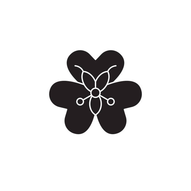 alstroemeria schwarz vektor konzept icon. alstroemeria flache abbildung, zeichen - inkalilie stock-grafiken, -clipart, -cartoons und -symbole
