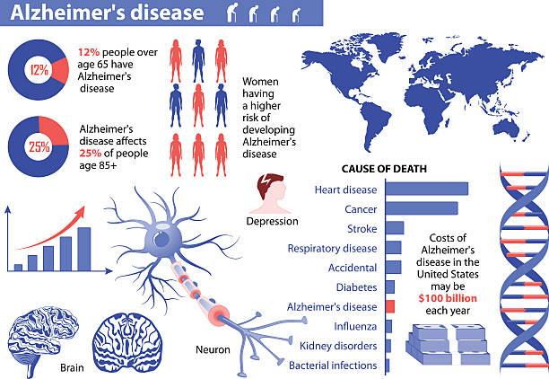 ilustrações de stock, clip art, desenhos animados e ícones de a doença de alzheimer. infográfico médica - alzheimer