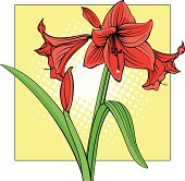 Amaryllis in Pop Art style with halftone background.