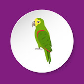 Amazon parrot icon in flat style on round button. Exotic tropical bird symbol isolated. Amazona ochrocephala.