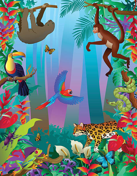 Amazon rainforest animals vertical jungle scene with many creatures A vector illustration of an Amazon rainforest animals vertical jungle scene with many creatures including a sloth, spider monkey, ocelot, boa constrictor, rhinoceros beetle, red-eyed tree frog, morpho butterfly (blue) toucan and scarlet macaw flying parrot. amazon stock illustrations
