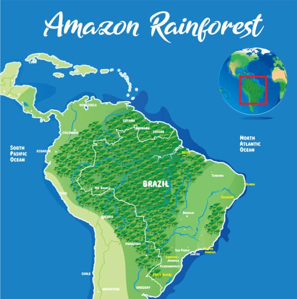 Amazon Rainforest Vector Amazon Rainforest http://legacy.lib.utexas.edu/maps/world_maps/world_physical_2015.pdf amazon stock illustrations