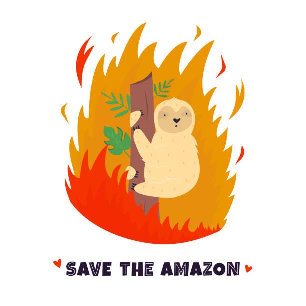 bildbanksillustrationer, clip art samt tecknat material och ikoner med amazonian forest i brand. lättja i flamma. vektor illustration. ekologisk och miljömässig katastrof - skog brand