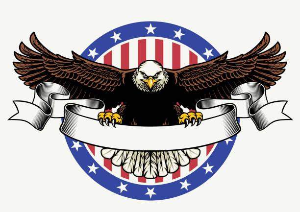 illustrations, cliparts, dessins animés et icônes de american bald eagle tenez le ruban blanc pour texte - aigle