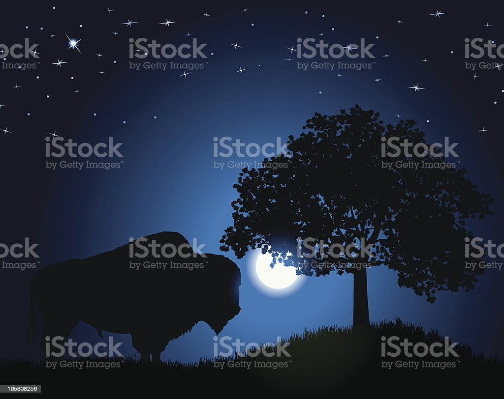 American Bison - Buffalo royalty-free american bison buffalo stock vector art & more images of american bison