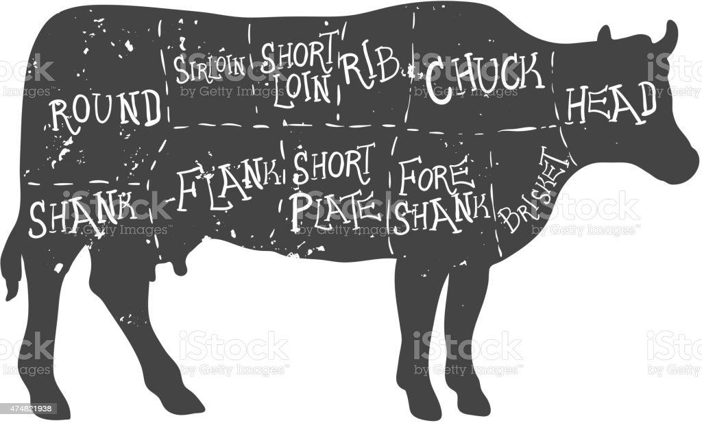 American cuts of beef, vintage typographic hand-drawn butcher cuts scheme vector art illustration
