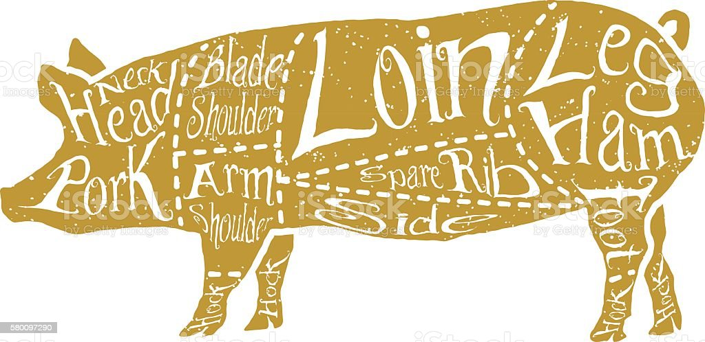 American cuts of pork vector art illustration