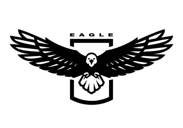 illustrations, cliparts, dessins animés et icônes de aigle américain. logo d'oiseau volant, emblème. illustration de vecteur. - aigle