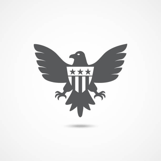 American Eagle Icon American Eagle Icon on white background presidential candidate stock illustrations