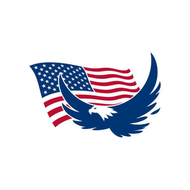 Amerikanischer Adler – Vektorgrafik