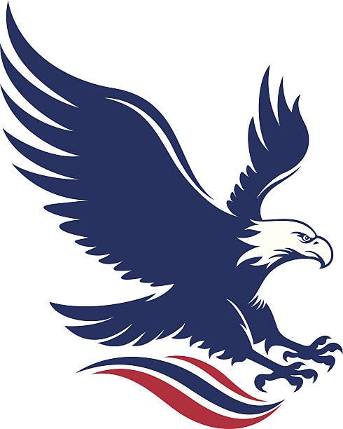 American eagle - ilustración de arte vectorial