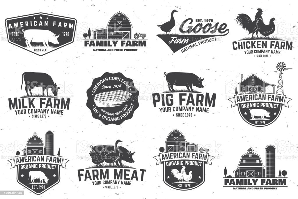 American Farm Badge or Label. Vector illustration vector art illustration