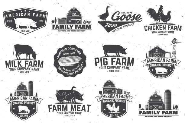 미국 농장 배지 또는 레이블입니다. 벡터 일러스트 레이 션 - 농장 stock illustrations