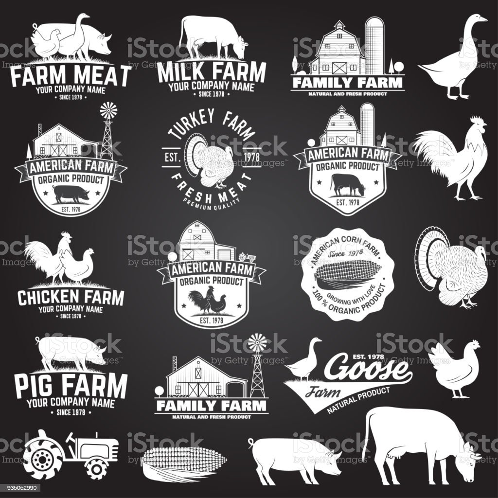 American Farm Badge or Label. Vector illustration vector art illustration