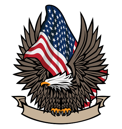 American Flag with Bald Eagle and Banner Color Isolated Vector Illustration