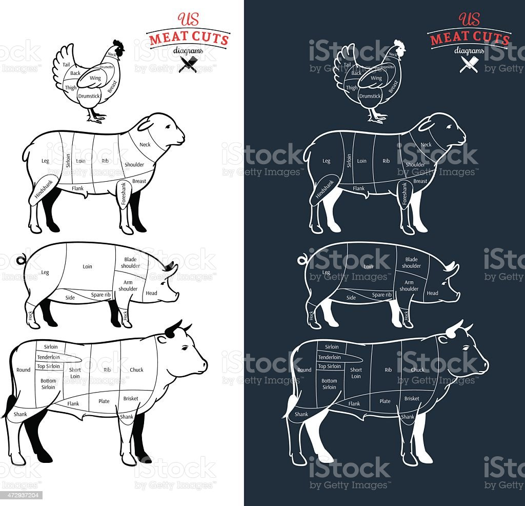 American (US) Meat Cuts Diagrams vector art illustration