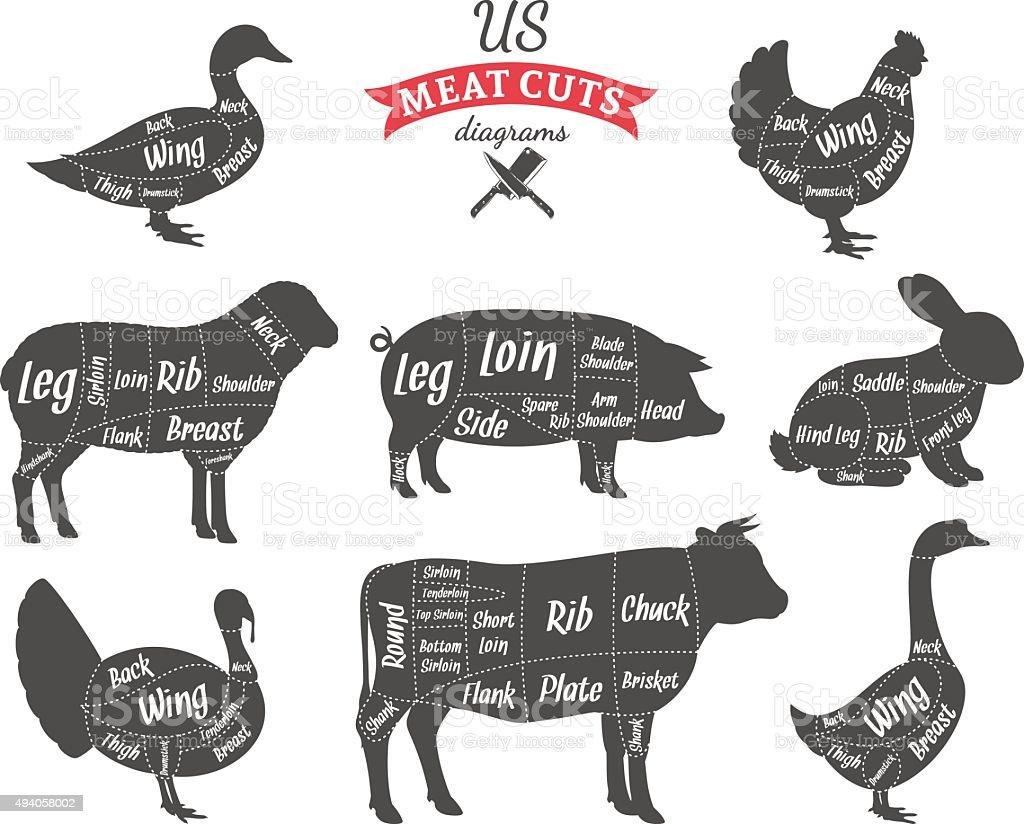 American (US) Meat Cuts Diagrams vector art illustration