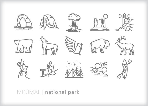American National Parks line icon set Set of 15 National Park line icons of famous natural sites, wild animals and activities such as camping, hiking, and kayaking american bison stock illustrations