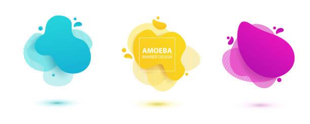 ilustrações de stock, clip art, desenhos animados e ícones de amoeba liquid design. dynamical colored forms of amoeba. modern banner template for logo, flyer, presentation design. yellow, red, blue colors. - amiba