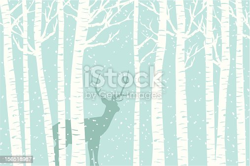 A deer walks through a stand of birch tree as the snow falls around it.
