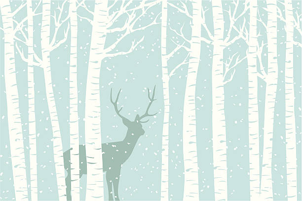 among the birch - animals background stock illustrations