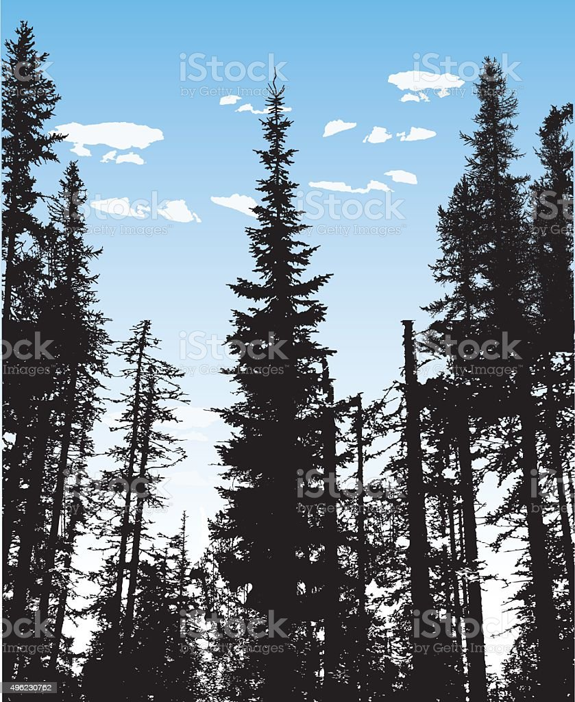 Among The Trees vector art illustration