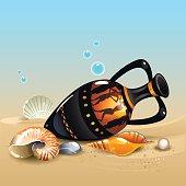 Amphora and shells