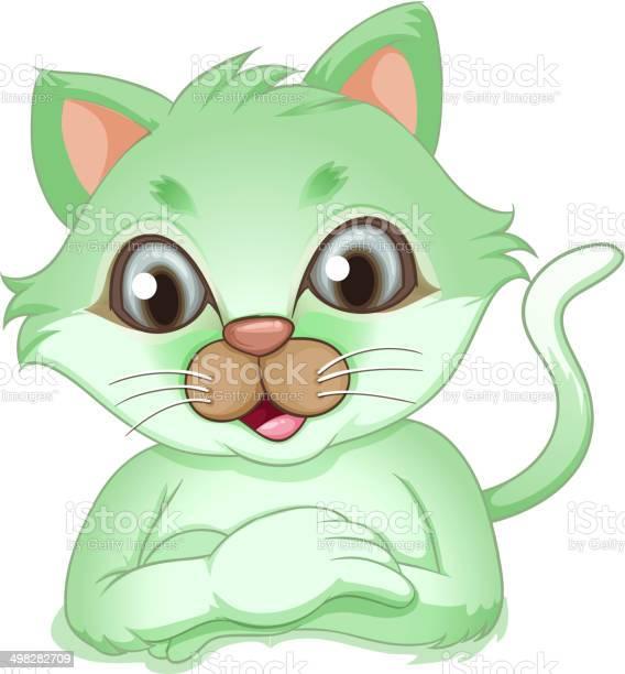 An adorable green cat vector id498282709?b=1&k=6&m=498282709&s=612x612&h=pyhxo5pm2lwd4fc2bevx3avj171zhrn4q6a9kwtyqy0=