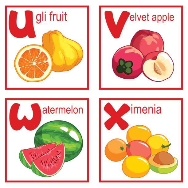 An Alphabet With Cute Fruits Vector Art Illustration