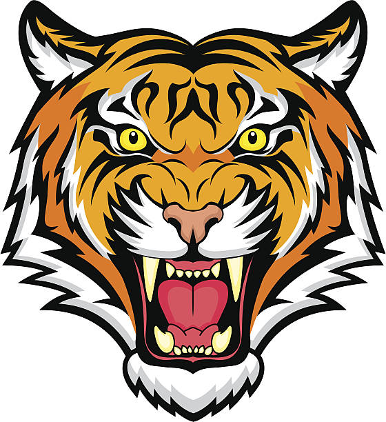stockillustraties, clipart, cartoons en iconen met an animated colorful snarling tiger - tijger
