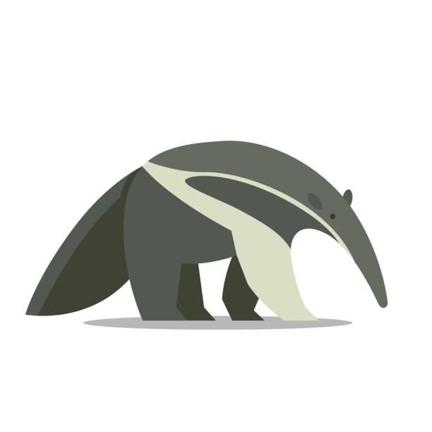 ein ameisenbär - ameisenbär stock-grafiken, -clipart, -cartoons und -symbole