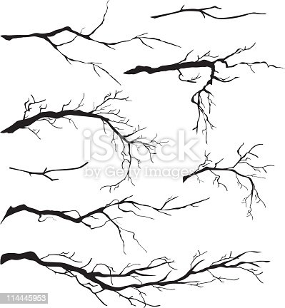 An Assortment of Bare Tree Isolated Branch Silhouettes. The branches are a vary of lengths and sizes.  Each branch can be moved and manipulated. Some of the tree branches are simple and some are very detailed. Black tree branch silhouettes.