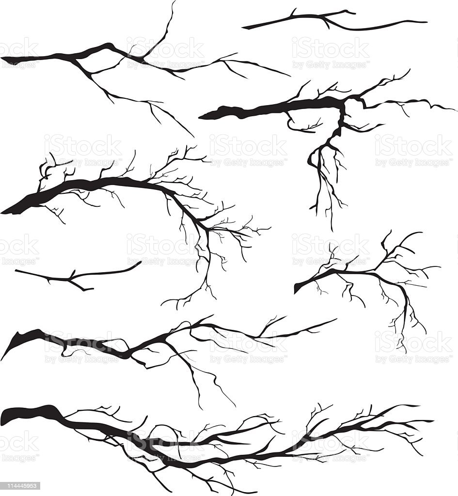 An Assortment of Bare Tree Isolated Branches Silhouettes vector art illustration