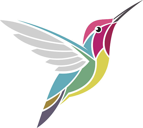 an illustrated picture of a multicolored hummingbird - hummingbird stock illustrations