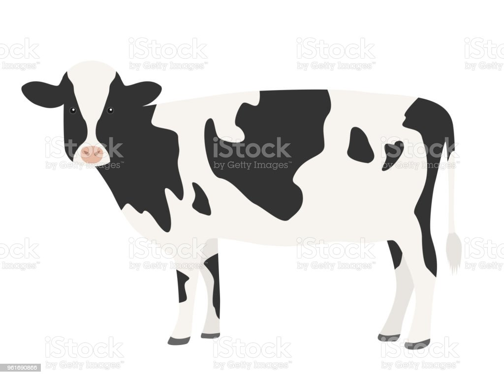 An illustration of a cow.
