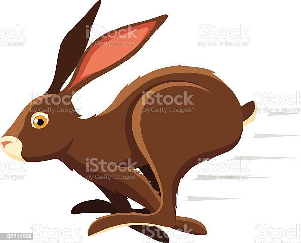 An illustration of a hopping bunny rabbit vector id165814686?b=1&k=6&m=165814686&s=612x612&h=5g2 ez035llayevowbjtclx88rfucg4zezhwovbbee4=
