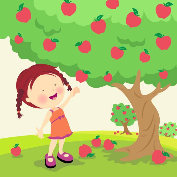 ilustrações de stock, clip art, desenhos animados e ícones de menina escolher maçãs - picking fruit