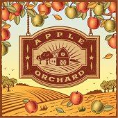 Retro landscape with Apple Orchard sign in woodcut style. Vector illustration with clipping mask. Includes high resolution JPG.