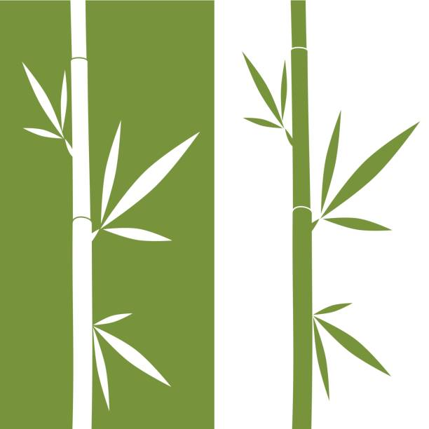 bamboo vector art graphics freevector com https www freevector com vector bamboo