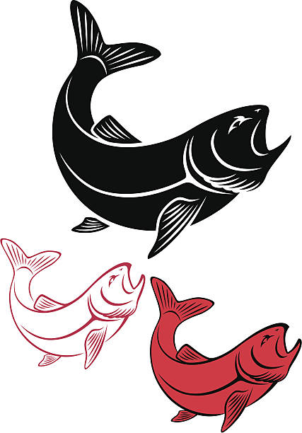 an illustration of three trout in black, red and white - redfish stock illustrations, clip art, cartoons, & icons